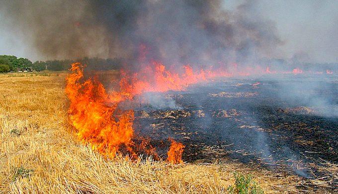 Κάψιμο της καλαμιάς